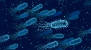 Avoiding Bacterial Resistance